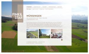 fink&star_02