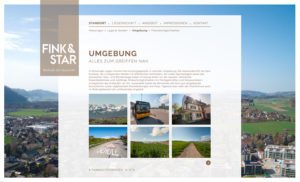 fink&star_03
