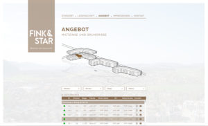 fink&star_04