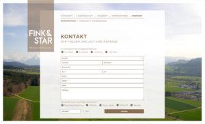 fink&star_05