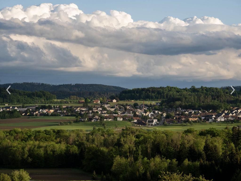 Foto Rickenbach ZH 4
