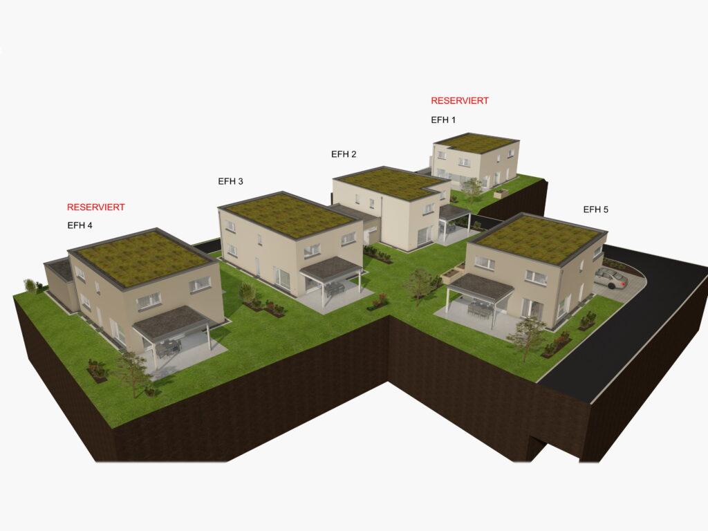 Neubau von Eigentums-Einfamilienhäusern