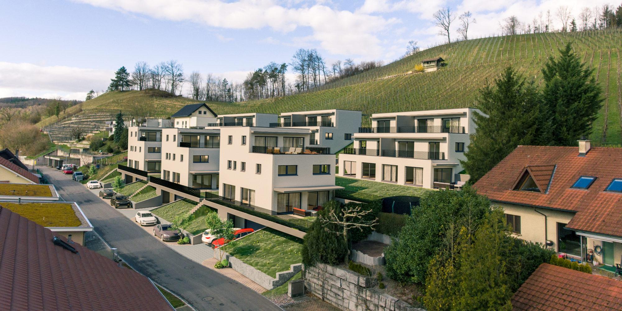 Aargau Zurzach Tegerfelden Weinberg - Tegerfelden